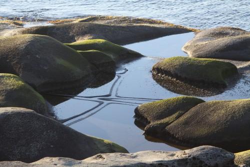 Seacross