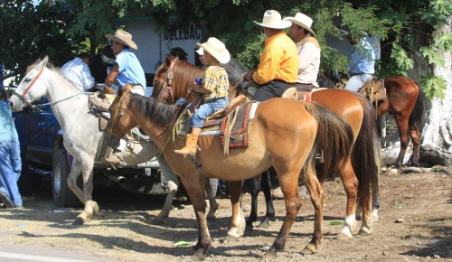 no matter how poor, the Mexicans appear to love their horses