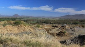 Sinaloa farmland, smell the pesticide.