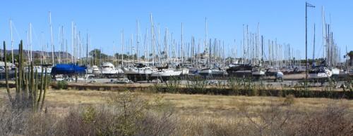 A field of broken dreams One marina sec in San Carlos