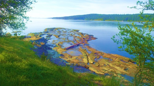 Surrealscape, Jack, tidal pool inspector at Gabriola Pass on a low tide