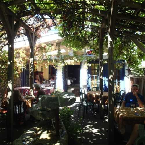 Under the groaning grape arbour in a bistro in Duncan