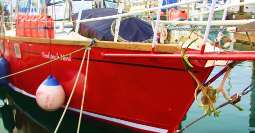 A red boat from Brussels via the Northwest Passage, Caribou skull lashed to the bow