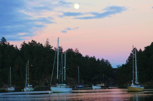 Silva Bay Harvest Moon, the night before it was full