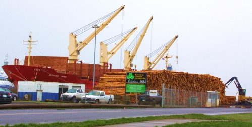 African Swan Yet another load of prime raw logs leaves the Pacific Northwest. What the hell are we doing?