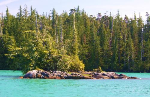 Bonsai burial Islet, Blair Inlet, behind Ivory Island