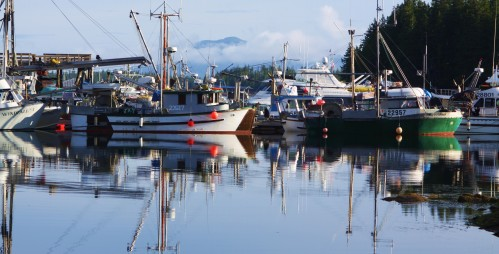 shearwater morning at the 'Hobo' dock. A fleet of gillnet boats waits for the sockeye opening
