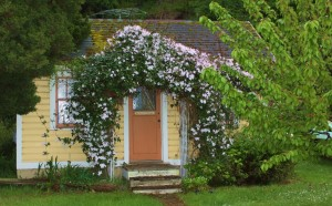 Clematis cottage, Port Hadlock
