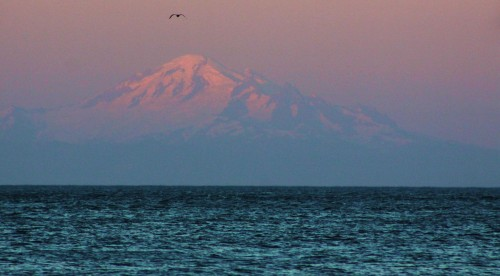 Last light. Mt. Baker across the Strait of Georgia.