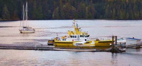 The banana boat. A view from my Port Hardy motel room. The yellow boat is one of two pilot boats based there. The two sailboats rafted together out in the bay both sport Swedish ensigns. They passed through Shearwater a few days earlier. did they come via the Northwest Passage?